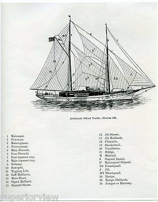 Auxillary Steam Yacht Sailing Diagram Vintage Sailboat Mast Sails Identified WOW