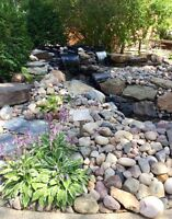 Professionals landscaping services