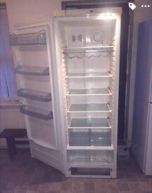 Tall fridge with mini freezer ,