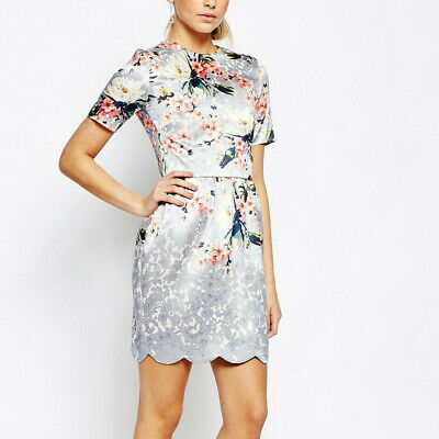 Hope & Ivy Floral Lace Print Scallop Hem Short Sleeve Party Dress 8 36 £65