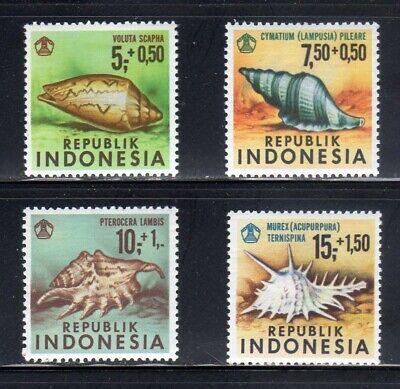 Indonesia-MNH-nice complete set of 4-Sc# B219-222 -Sea Shells-1969