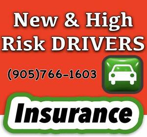 Free High Risk Auto Insurance Quotes