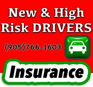 Auto Insurance Quotes, Check Your Record. Need it quick? Click link bellow: