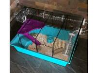 Hamster and cage with accesories