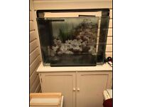 80 litre tropical/coldwater fish tank and ornaments