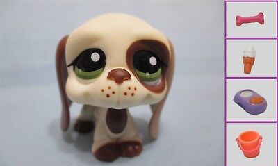 Littlest Pet Shop Dog Basset Hound 1594 and Free Accessory Authentic