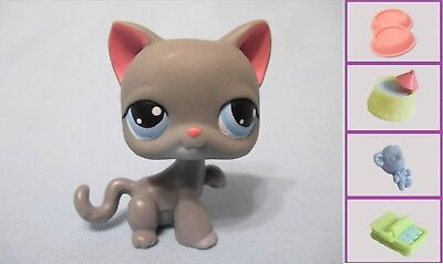 Littlest Pet Shop Cat Kitty Paw Up Grey 74 and Free Accessory Authentic Lps - Kitty Paw