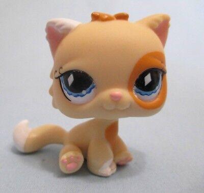 Littlest Pet Shop Cat Persian 521 Diamond Eyes Kitten Kitty Authentic