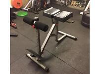 Bodycraft F670 Roman Chair / Hyper Extension / GHD / Triceps Dips