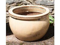 Nice ceramic plant pot