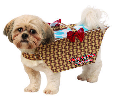 Dorothy's Dog Wizard Of Oz (Pet Toto The Wizard Of Oz Dorothy's Dog Basket Halloween)