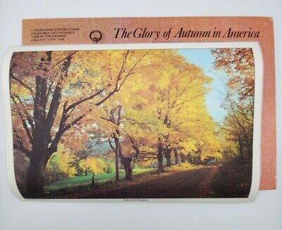 Vintage The Glory of Autumn Placemats Set of 6 Fall in America Framing and Decor