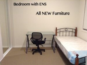 $150pw for a near brand new ensuite with near brand new furniture Eight Mile Plains Brisbane South West Preview
