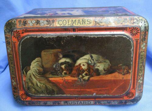CAVALIER KING CHARLES SPANIELS SCOTTISH DEERHOUND LANDSEER DOGS COLMAN