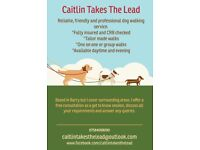Dog walking deals from caitlin takes the lead