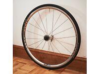 Shimano 700c Rear wheel for single speed bike with 16 teeth cog freewheel £30
