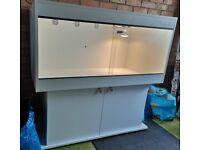 Vivarium and cabinet custom built in Matt white.