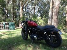 2012 custom Iron 883 Harley Davidson very tidy must see, may swap Mollymook Shoalhaven Area Preview