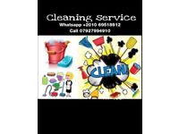 Cleaner house and garden