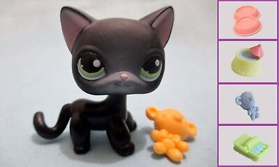Littlest Pet Shop Shorthair 336 Free Accessory US Seller Authentic