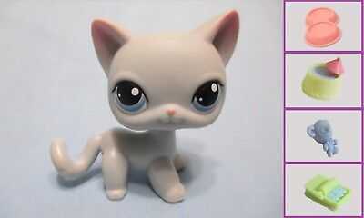Littlest Pet Shop LPS  Gray Siamese Shorthair CAT #246+1 FREE Acess 100% Authen, usado comprar usado  Enviando para Brazil