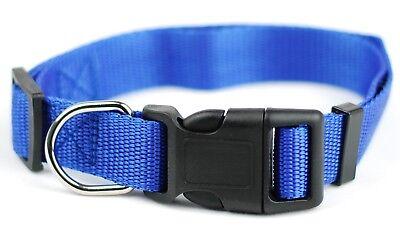 Halsband Halsbänder Hundehalsband Hundehalsbänder 13 Farben 2,5 cm