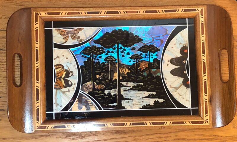 Vintage Artefama Brazil Butterfly Wing Art Wood Inlay Wooden Tray
