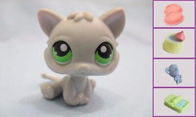 Exclusive Littlest Pet Shop (Littlest Pet Shop Cat Kitten Grey Gray Green 88 Authentic Lps)