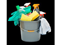 private housekeeper/domestic worker/cleaner available