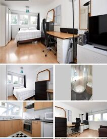 Large Studio Flat to Rent in Leafy Southfields