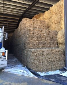 PEA STRAW FOR SALE Swan Hill Swan Hill Area Preview