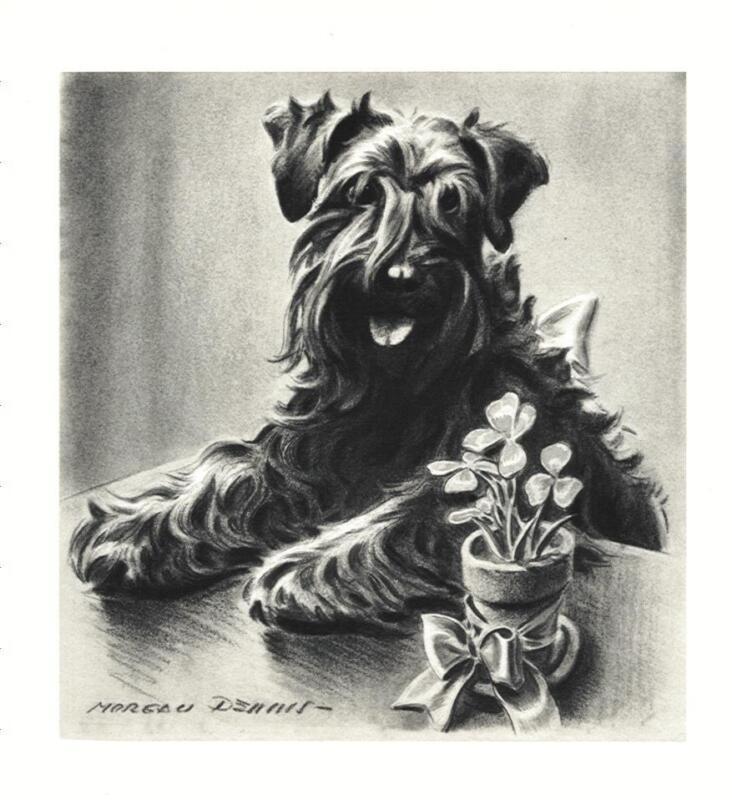 Kerry Blue Terrier - Morgan Dennis Dog Print - MATTED