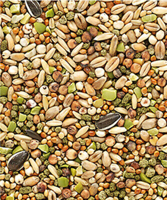 6 x 1KG Versele-Laga Country's Best Snack Garden Mix Poultry Feed with Alfalfa
