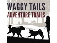 Waggy Tails Adventure Trails. Professional and friendly dog walking and pet sitting service.