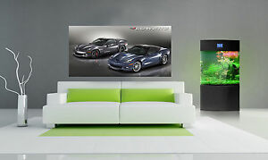 2012-CHEVY-CHEVROLET-CORVETTE-ZR1-AND-Z06-LARGE-POSTER-24-x48