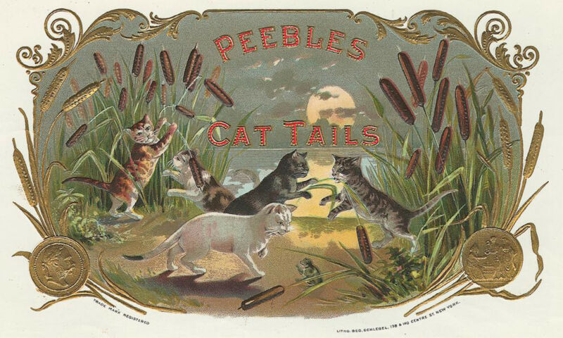 """ CAT TAILS""  Antique Cigar Label T Shirt Playful Cats SMALL-XXXLARGE (F)"