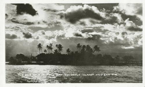 Vintage Historical Hawaii Coconut Island Hilo Bay Palm Trees Original 6x4 Photo