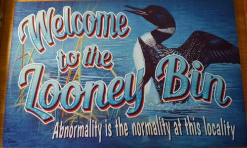 WELCOME TO THE LOONEY BIN Loon Rug Heavy Duty Rubber Back Cabin Lodge Lake Decor