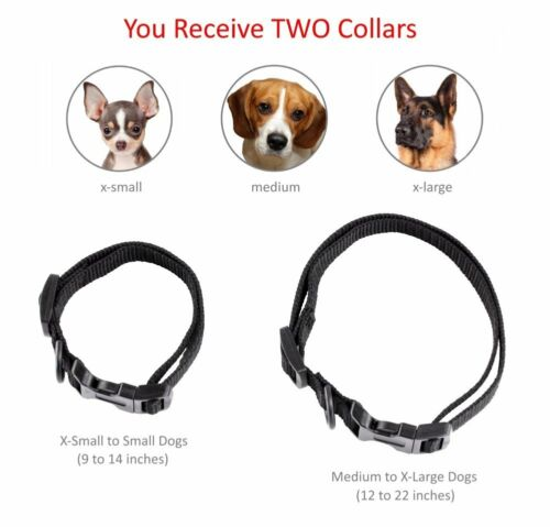 Купить eXuby® EXB-DCH - Shock Collar for Small Dogs w/Remote + FREE TrainingClicker- 3 Mode Dog Training