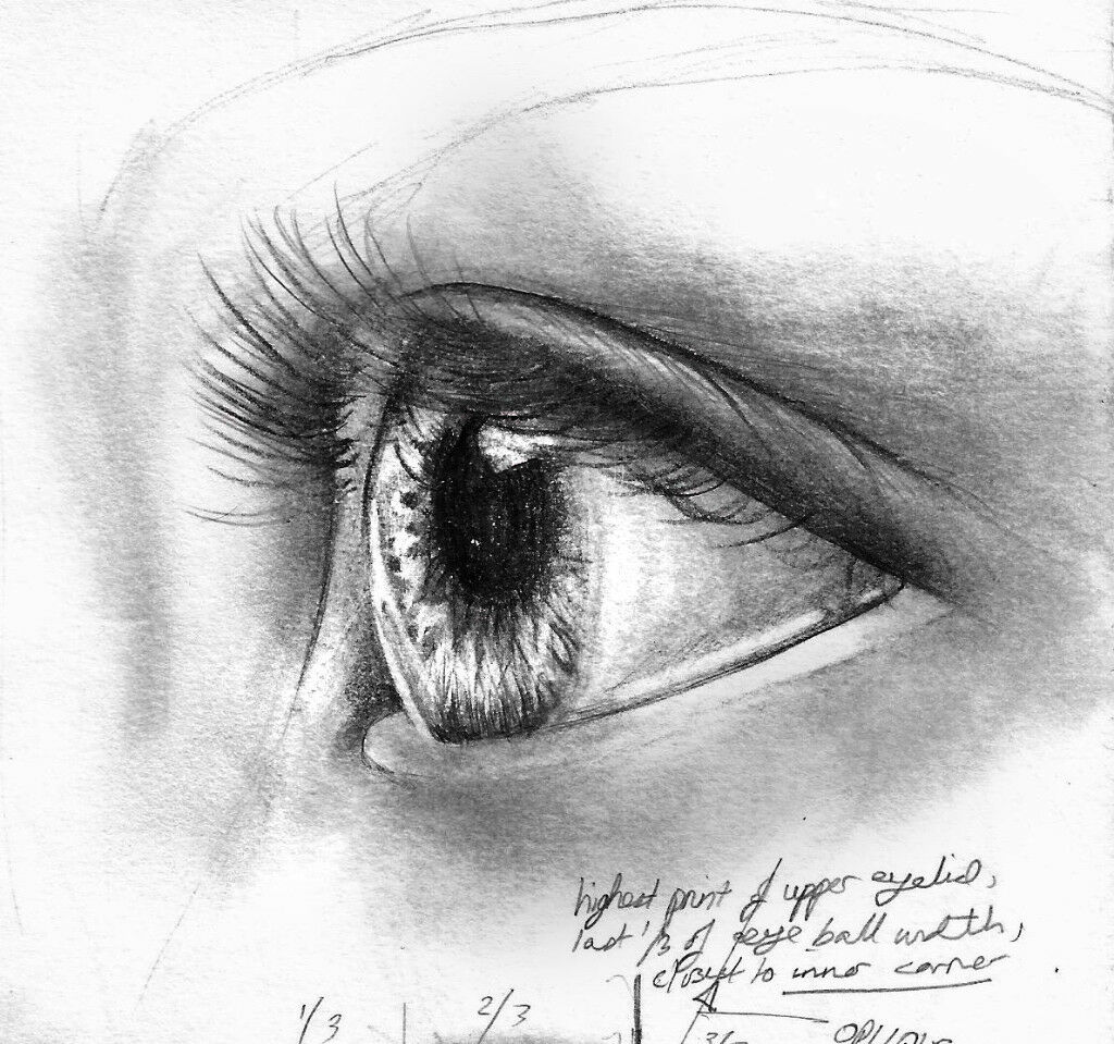 DRAWING|PAINTING TUITION NORTHWEST LONDON £30 per hour