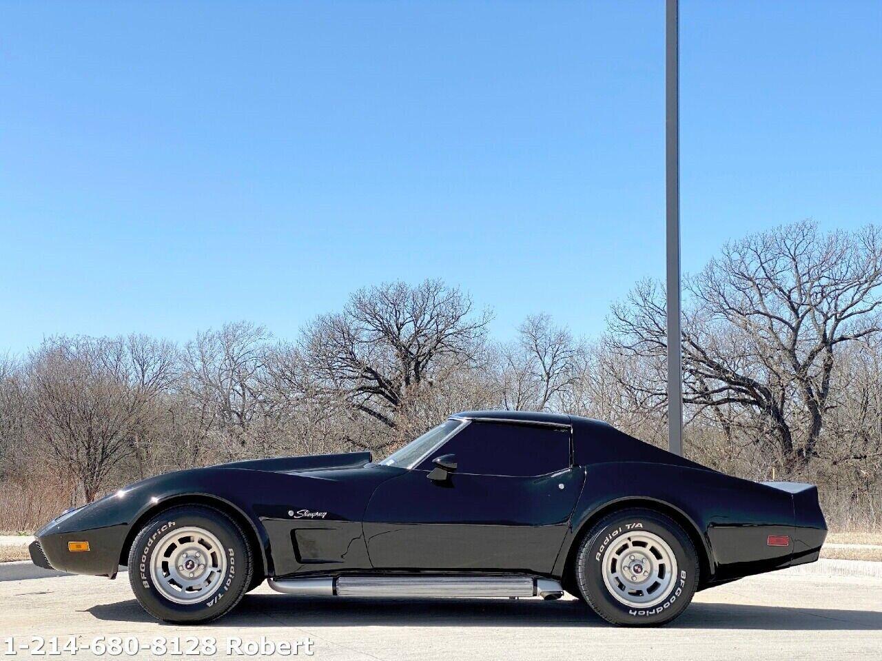 1976 Black Chevrolet Corvette Stingray  | C3 Corvette Photo 4