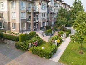 108 15918 26 AVENUE Surrey, British Columbia