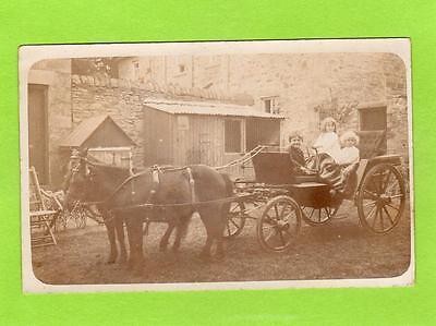 Childrens Horse & Carriage Shetland Ponies ? unused RP pc