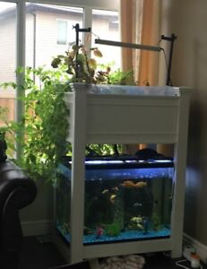 Aquaponics for your Living Room - Not just FISH