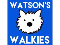 Professional Dog Walking and Pet Services in Cardiff