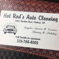 Detailed cleaning and lawn service !