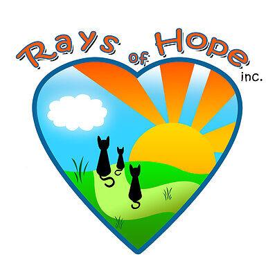 Rays of Hope inc.