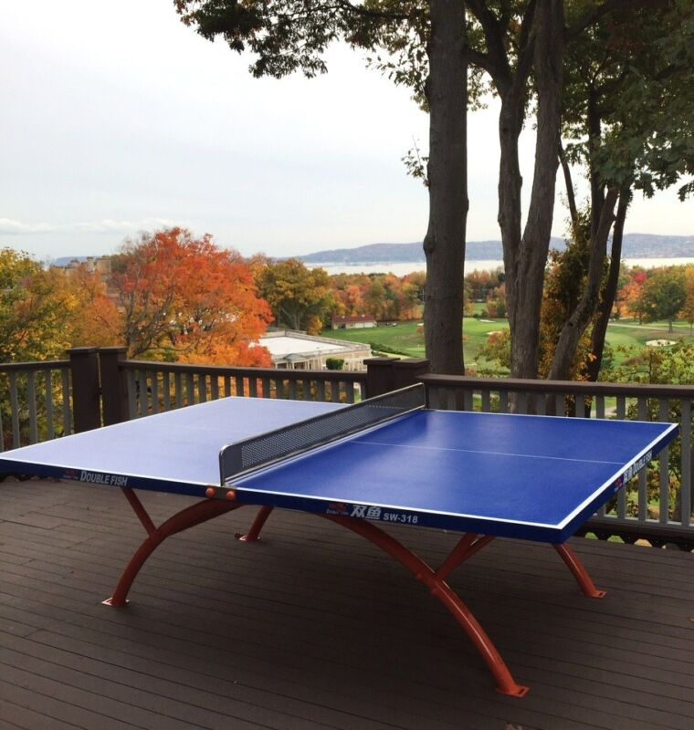 DREAM table at affordable $$.Unique outdoor ping pong table tennis,local pick up