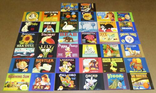 LOT 38 DIFFERENT NOS DEADSTOCK CRATE LABEL POSTCARDS ADVERTISING NICE QUALITY L9