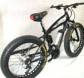 FAT tyre eBike Mountain bike